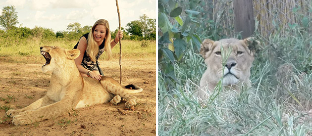 Jobovic Safaris - South African Tour operator